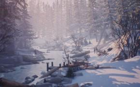 Картинка nature, winter, life is strange 2