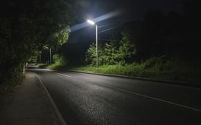 Картинка асфальт, фонарь, ночь, дорога, темный фон