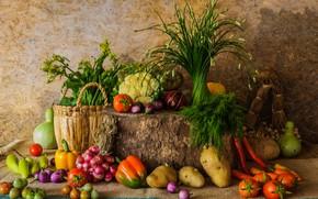 Картинка осень, урожай, тыква, натюрморт, овощи, autumn, still life, pumpkin, vegetables, harvest