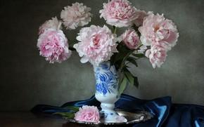 Картинка розовый, ваза, пион