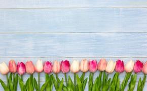 Картинка цветы, тюльпаны, розовые, white, wood, pink, flowers, tulips, spring