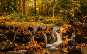 Картинка осень, лес, листья, деревья, ветки, парк, камни, листва, водопад, поток, желтые, водопады, листопад, каскад, водоем, …