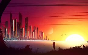 Картинка солнце, птицы, город, человек, Calm Evening