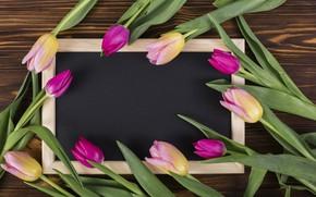 Картинка цветы, рамка, colorful, тюльпаны, розовые, wood, pink, flowers, tulips, spring, purple, frame
