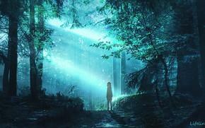 Картинка лес, девушка, фэнтези, нимб