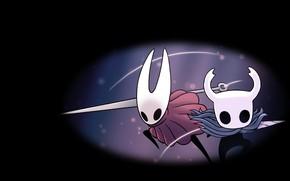 Картинка Hornet, Hollow Knight, Team Cherry