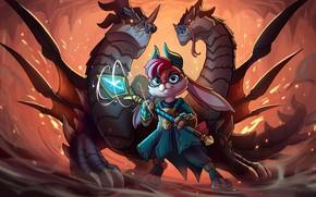 Картинка игра, драконы, кролик, Paladins