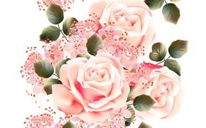 Обои белый, цветы, фон, розы, текстура