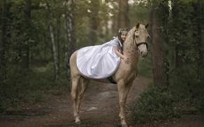 Картинка природа, конь, девочка