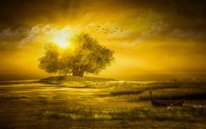 Картинка небо, трава, солнце, облака, лучи, свет, пейзаж, закат, птицы, природа, рендеринг, дерево, берег, лодка, стая, …