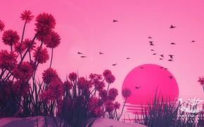 Картинка Закат, Цветы, Солнце, Птицы, Sunset, Environments, Jay Kubisch, Svenska vitlök, by Jay Kubisch