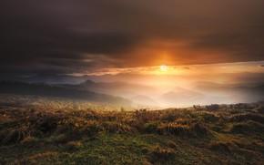 Картинка поле, закат, ночь, природа