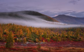 Картинка осень, лес, небо, горы, туман, холмы, склоны, дымка
