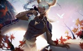 Картинка осень, листья, аниме, арт, парень, саке, LY 炼 妖, 金牛座