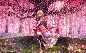 Картинка цветы, дерево, Touken Ranbu, Танец мечей