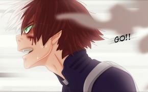 Картинка аниме, арт, парень, Пар, Boku no Hero Academia, Моя геройская академия, Тодороки Шото