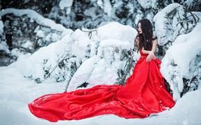 Картинка зима, девушка, снег, поза, фото, модель, платье, Sergey Shatskov