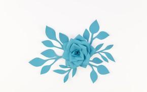 Картинка белый, цветок, бумага, фон, голубой