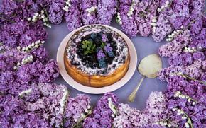 Картинка цветы, ягоды, торт, десерт, сирень