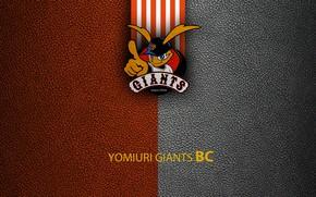 Картинка wallpaper, sport, logo, baseball, Yomiuri Giants