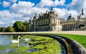 Картинка лето, пруд, замок, Франция, лебеди, дворец, French, замок Шантийи, северный пригород Парижа, The Château de …