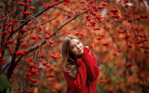 Картинка осень, в красном, рябина, свитер, Анна Шувалова