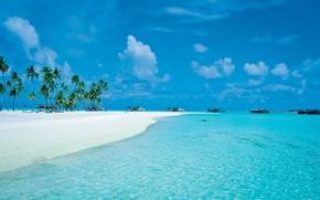 Картинка пляж, пальмы, океан, остров, курорт