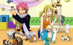 Картинка романтика, аниме, арт, пара, котята, двое, Fairy Tail, Нацу, Люси, Хеппи, Хвост феи