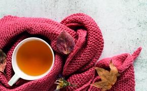 Картинка осень, листья, тепло, чай, чашка, autumn, вязание, вязаная вещь