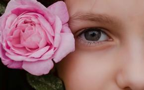 Картинка девушка, лицо, глаз, роза, Raspopova Marina