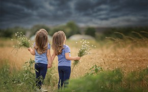 Картинка поле, небо, трава, тучи, природа, дети, девочки, сестрёнки, близнецы, букетики