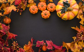 Обои осень, листья, фон, дерево, colorful, Halloween, тыква, клен, wood, background, autumn, leaves, осенние, pumpkin, maple
