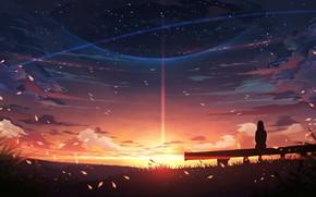 Картинка небо, девушка, закат, природа