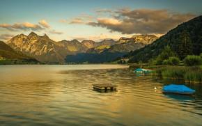 Картинка лес, небо, облака, деревья, горы, озеро, берег, лодки, Швейцария, домики, Sihlsee