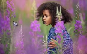 Картинка цветы, бабочка, удивление, девочка