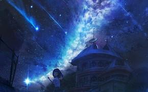 Картинка девушка, ночь, млечный путь, обсерватория, звездопад