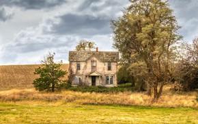 Картинка поле, дом, дерево