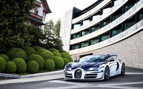 Картинка Roadster, Bugatti, Veyron, суперкар, гиперкар, Grand Sport, Vitesse