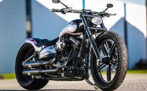 Картинка Harley-Davidson, Softail, Thunderbike, Custom bike