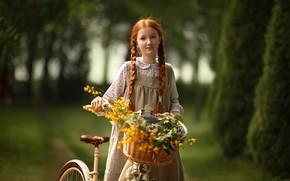 Картинка цветы, велосипед, корзина, девочка, рыжая, Ragan Sylwia