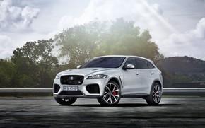 Картинка Jaguar, кроссовер, SVR, F-Pace, 2019