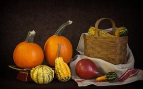Обои осень, корзина, еда, урожай, тыква, натюрморт, овощи
