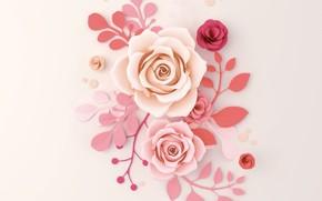 Картинка цветы, бумага, фон