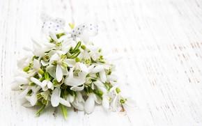 Картинка цветы, букет, подснежники, white, белые, flowers, spring, snowdrops