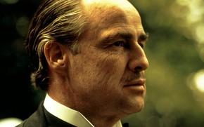 Картинка актер, Крестный Отец, Марлон Брандо, персонаж