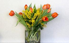 Картинка цветы, фон, букет, тюльпаны, ваза, мимоза, весенний букет