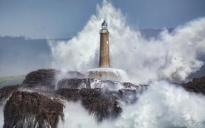 Картинка море, волны, скалы, маяк, чайки