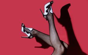 Картинка розовый фон, женские ноги, heels, mesh stockings, pink background, туфли на каблуках, чулки-сетка, Rodolfo Clix, …