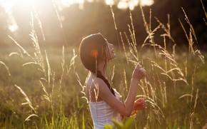 Картинка поле, лето, трава, девушка, солнце, колосья