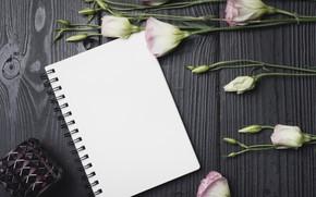 Обои цветы, букет, wood, flowers, purple, эустома, eustoma